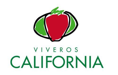 VIVEROS CALIFORNIA, S.L.