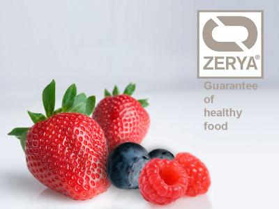 Cuna de Platero es pionera en la certificación Zerya de tres cultivos: fresa, frambuesa y arándano