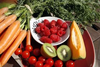 Bruselas aprueba nuevos programas de promoción de productos agrícolas