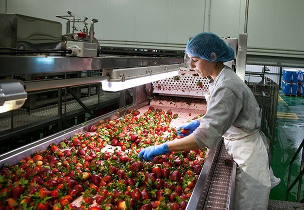 La mayor procesadora de frutos rojos del sur de Europa está asociada a Adesva